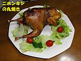 Kijimarui2