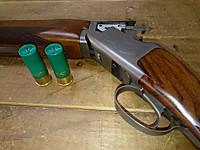 Shotgun_and_shells