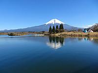 Fuji_tanukiko