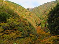 Kouyou1_2