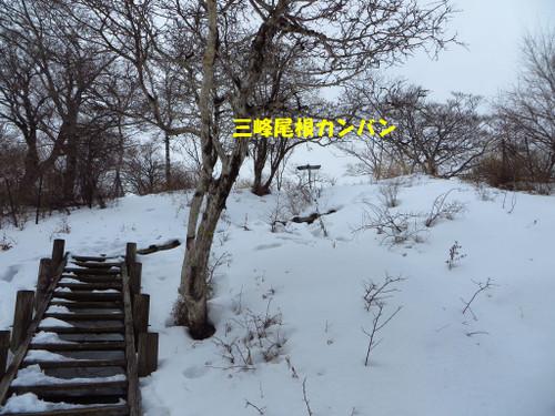 Mitsu2_2