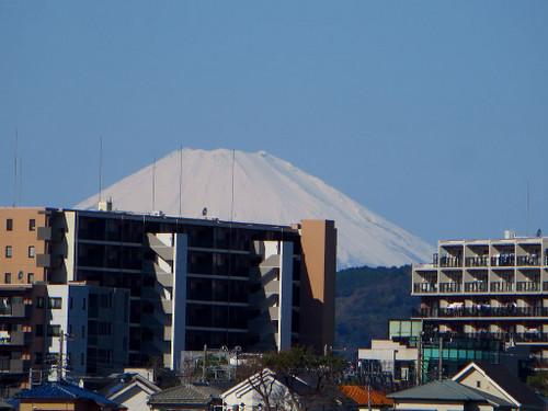 Yukigesho