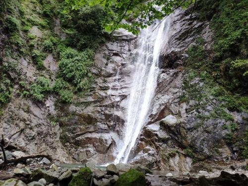 Shimodana