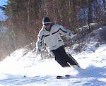 Ski_downhill