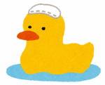 Duck_furo