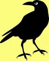 Blackcrow2
