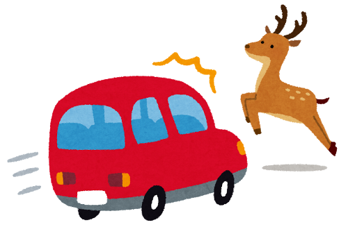 Deer_accident