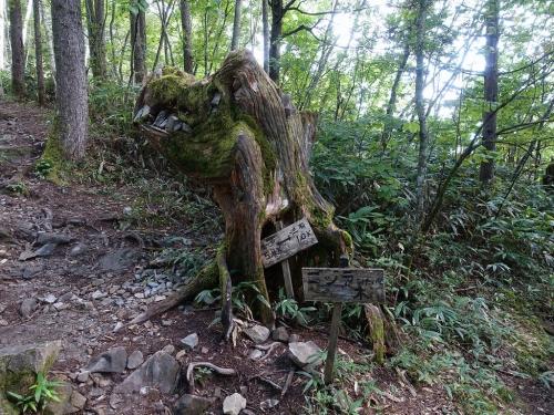 Gojira_wood2