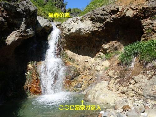 Kusaka3